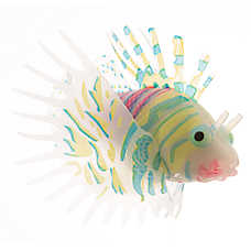 Top Fin® Glow-in-the-Dark Swimming Fish Aquarium Ornament