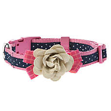 Top Paw® Polka Dot with Flower Dog Collar