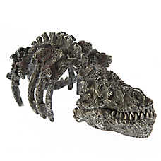 All Living Things® Dinosaur Skeleton Fossil Reptile Ornament