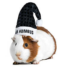 All Living Things® Pet Holiday Bah Humbug Small Animal Hat