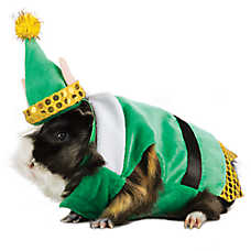 All Living Things® Pet Holiday Elf Small Pet Costume