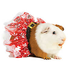 All Living Things® Pet Holiday Small Pet Tutu