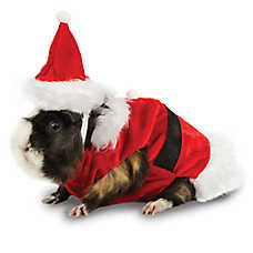 All Living Things® Pet Holiday Santa Small Pet Costume