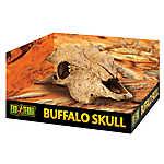 Exo Terra® Buffalo Skull