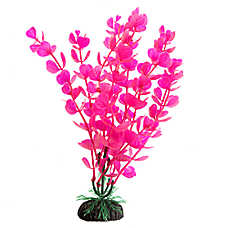 Top Fin® Pink and Aquarium Plant