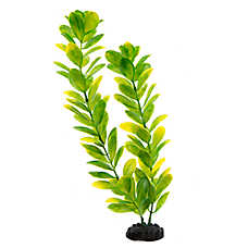 Top Fin® Long Green Aquarium Plant