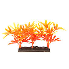 Top Fin® Oranage Palm Aquarium Plant
