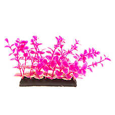 Top Fin® Purple Aquarium Plant