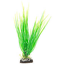Top Fin® Green Spikey Aquarium Plant