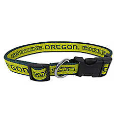 Oregon Ducks NCAA Dog Collar