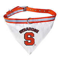 Pets First Syracuse Orange NCAA Collar Bandana