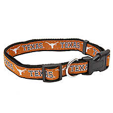 Texas Longhorns NCAA Dog Collar