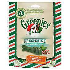 GREENIES® Seasonal Petite Dental Dog Treat - Freshmint