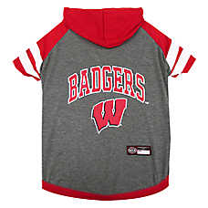 Wisconsin Badgers NCAA Hoodie T-Shirt