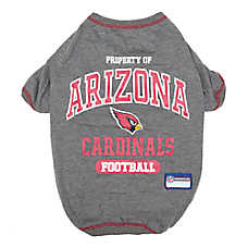 Arizona Cardinals NFL Team Tee