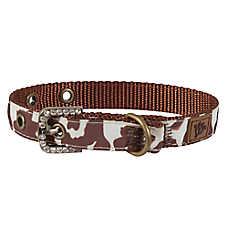 MuttNation Cowhide Print Dog Collar