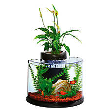 Elive™ 3 Gallon Aquaponics Semi Circle Aquarium Kit