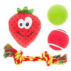 Top Paw® Strawberry 4-Pack Dog Toy