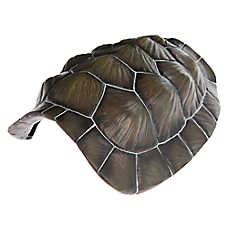 All Living Things Tortoise Shell Reptile Ornament
