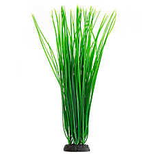 Top Fin® Spikey Grass Plant
