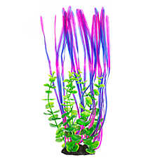 Top Fin® Blue and Pink Seaweed Plant