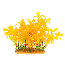 Top Fin®  Glow-in-the-Dark Orange Plant