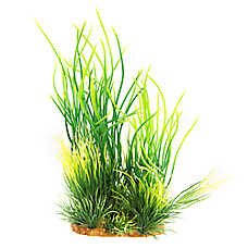 National Geographic™ Natural Grass Landscape Aquarium Plant