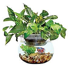 Top Fin® Aquaponics Cultivate 1 Gallon Desk Aquarium
