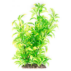 Top Fin® Green Pretty Leaf Aquarium Plants