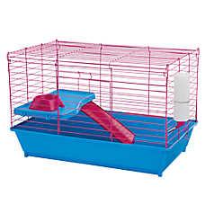 Grreat Choice® Guinea Pig Starter Kit