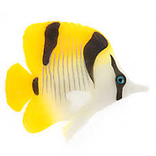 Top Fin® Falcula Butterflyfish Aquarium Ornament