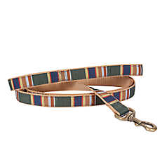 Pendleton National Park Badlands Hiker Dog Leash