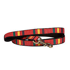 Pendleton National Park Rainier Hiker Dog Leash