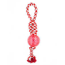 Top Paw® Canadian Tug Rope with Ball Dog Toy