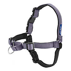 PetSafe® Deluxe Easy Walk Dog Harness