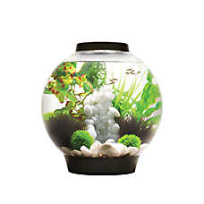 biOrb® CLASSIC 8 Gallon LED Aquarium