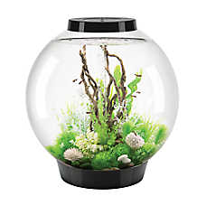 biOrb® CLASSIC 28 Gallon LED Aquarium