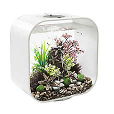 biOrb® LIFE 8 Gallon LED Aquarium
