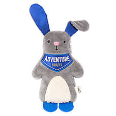 ED Ellen DeGeneres Bunny Dog Toy - Plush, Teether