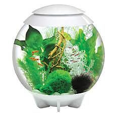 biOrb® HALO 16 Gallon LED Aquarium