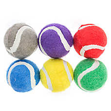 Top Paw® Back to School Tennis Balls 6-Pack Dog Toy