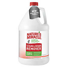 Nature's Miracle® Dog Stain & Odor Remover - Melon Burst