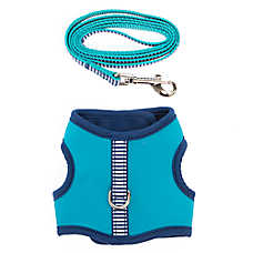 Top Paw® Stripe Dog Harness & Leash Set