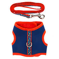 Top Paw® Stars Dog Harness & Leash Set