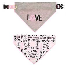 ED Ellen DeGeneres Love Dog Collar & Bandana Set
