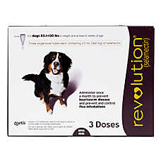 Revolution for Dogs 86-130 lbs