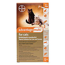 Advantage Multi Topical Solution for Cats - 6 Pack