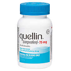 Quellin Soft Chews (carprofen)