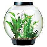 biOrb® CLASSIC 4 Gallon LED Aquarium