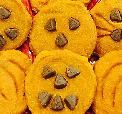 Pumpkin Cookie Recipe for Dogs